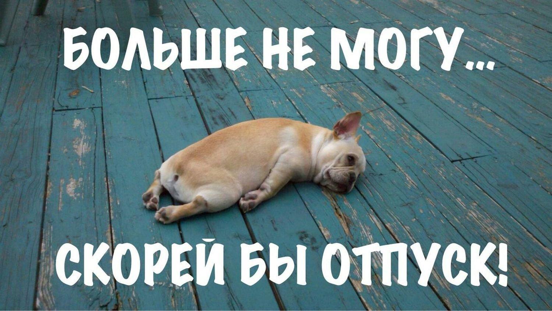 Николаевка славянский район новости последние новости