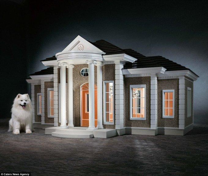 Как выглядят собачьи будки за 200 тысяч долларов. Фото