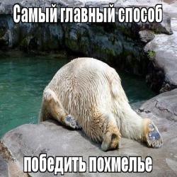 """""""Рассольчика не найдется?"""": веселые картинки на понедельник"""