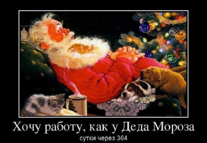 новый год. смешные картинки