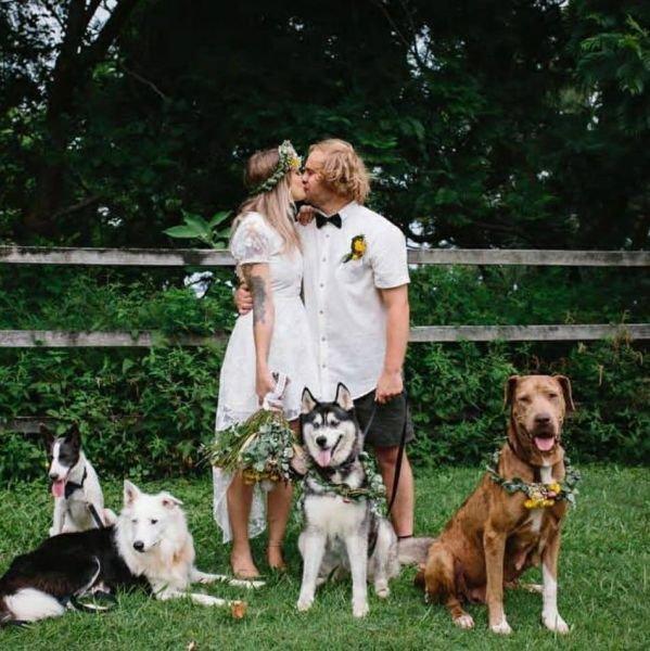 Сэкономили: оператором на свадьбе стала собака. Фото