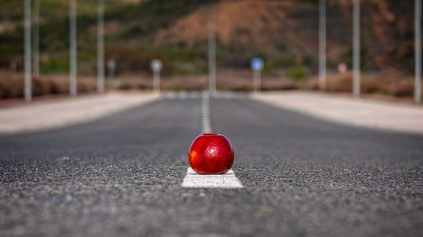В Сети показали самую качественную дорогу в мире
